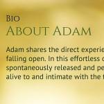 About Adam Chacksfield