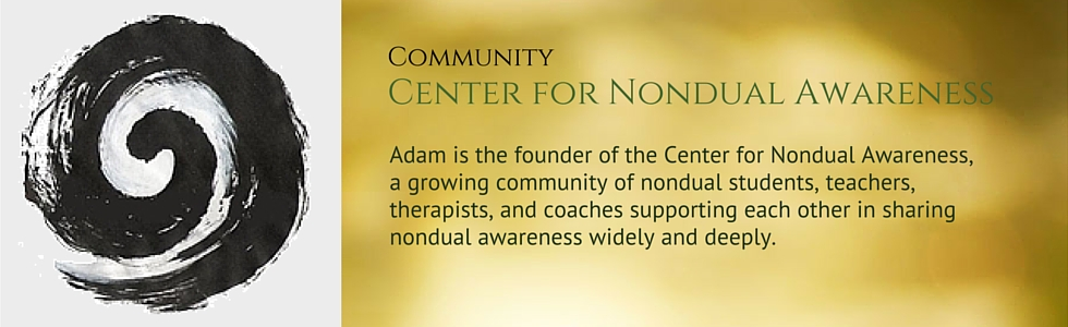 The Center for Nondual Awareness